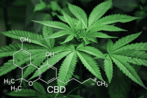 cbd chemicals